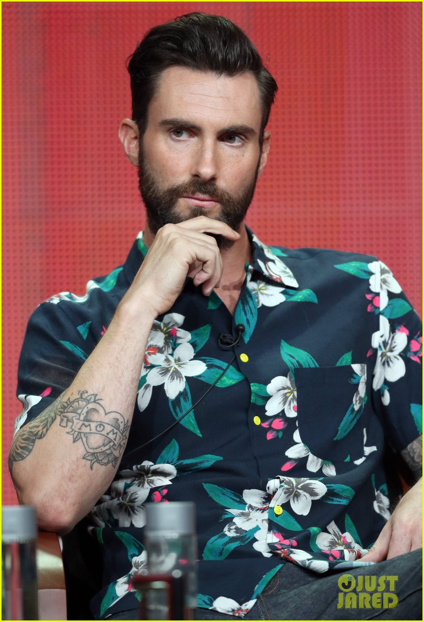 adam levine cee lo green nbc summer tca tour event 17