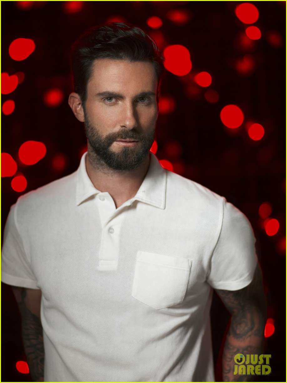 christina aguilera adam levine the voice season 5 poster 01
