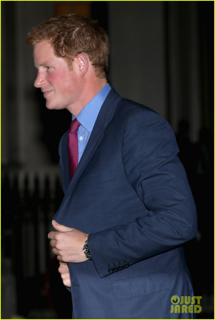 prince harry mapaction reception for charity 05