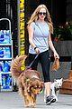 amanda seyfried immortality for her dog finn 04