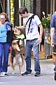amanda seyfrieds dog finn jumps kisses justin long 05