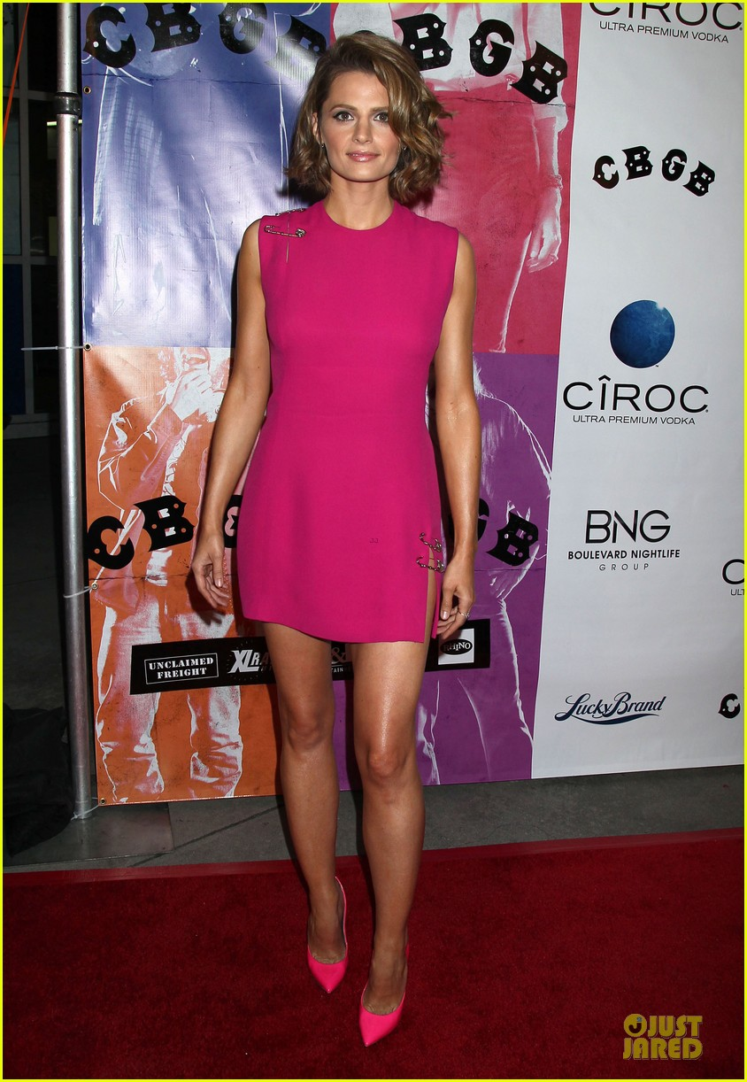 ashley greene malin akerman cbgb hollywood premiere 24