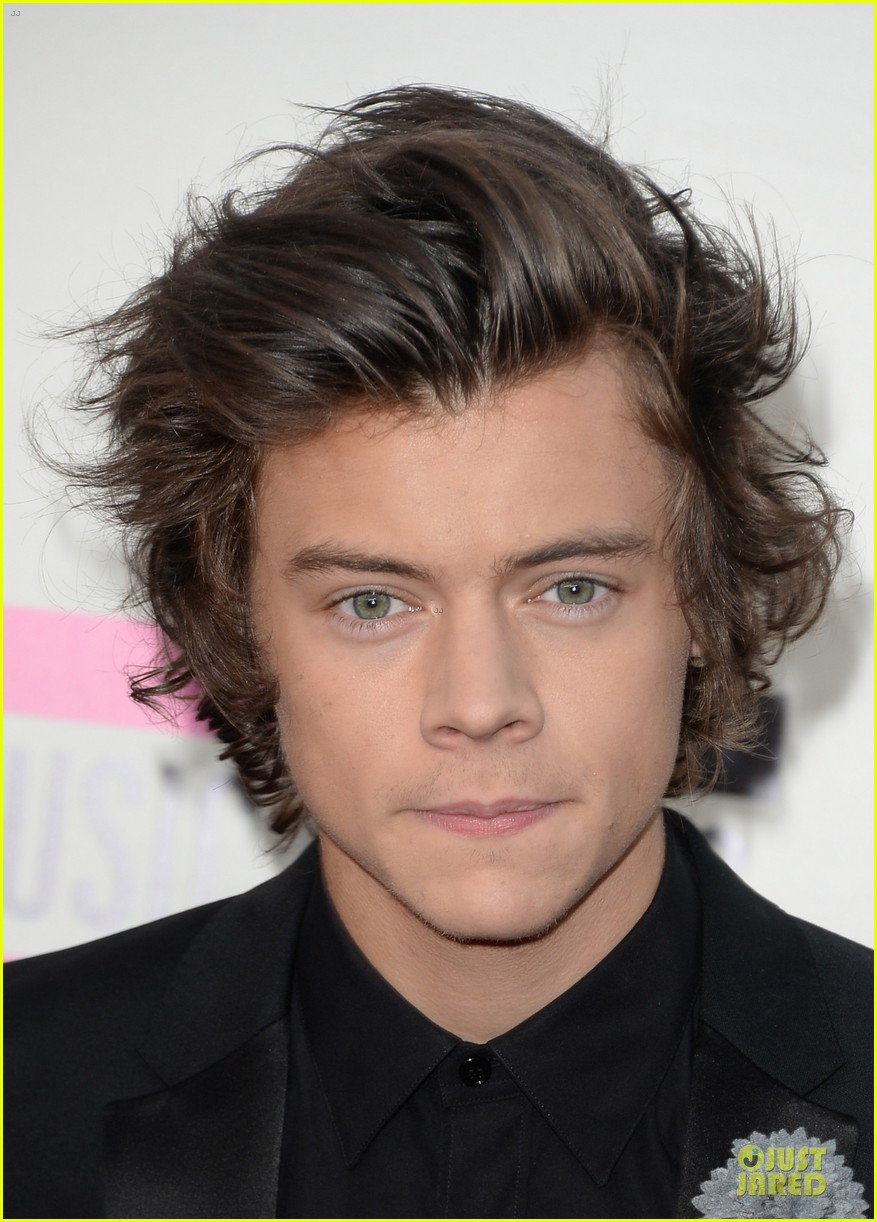 one direction amas 2013 red carpet 02