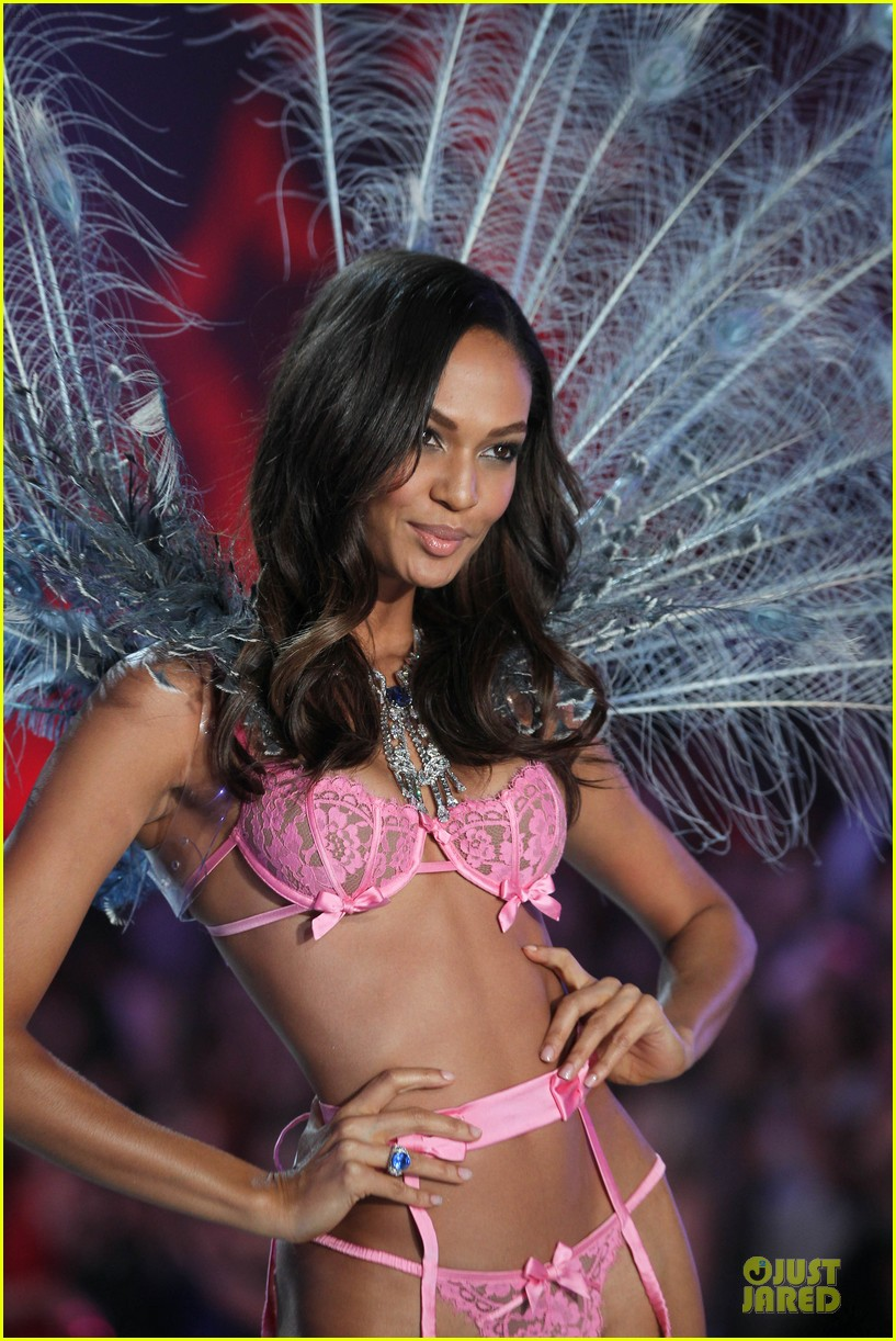 adriana lima lily aldridge victorias secret fashion show 2013 28