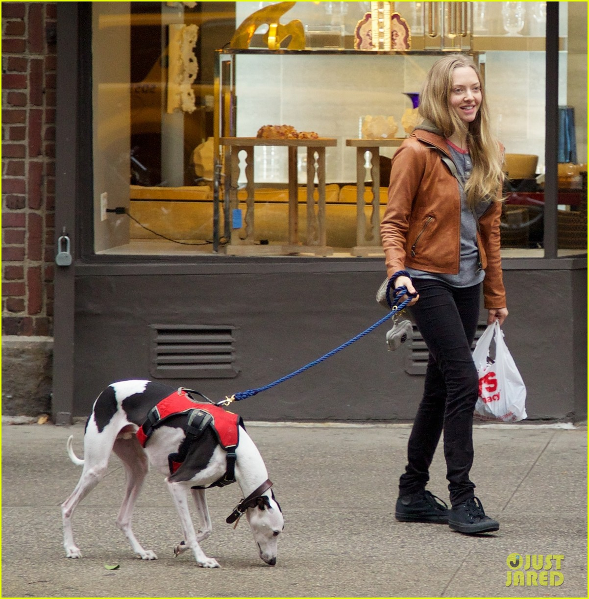 amanda seyfried halloween dog walk with male pal 05