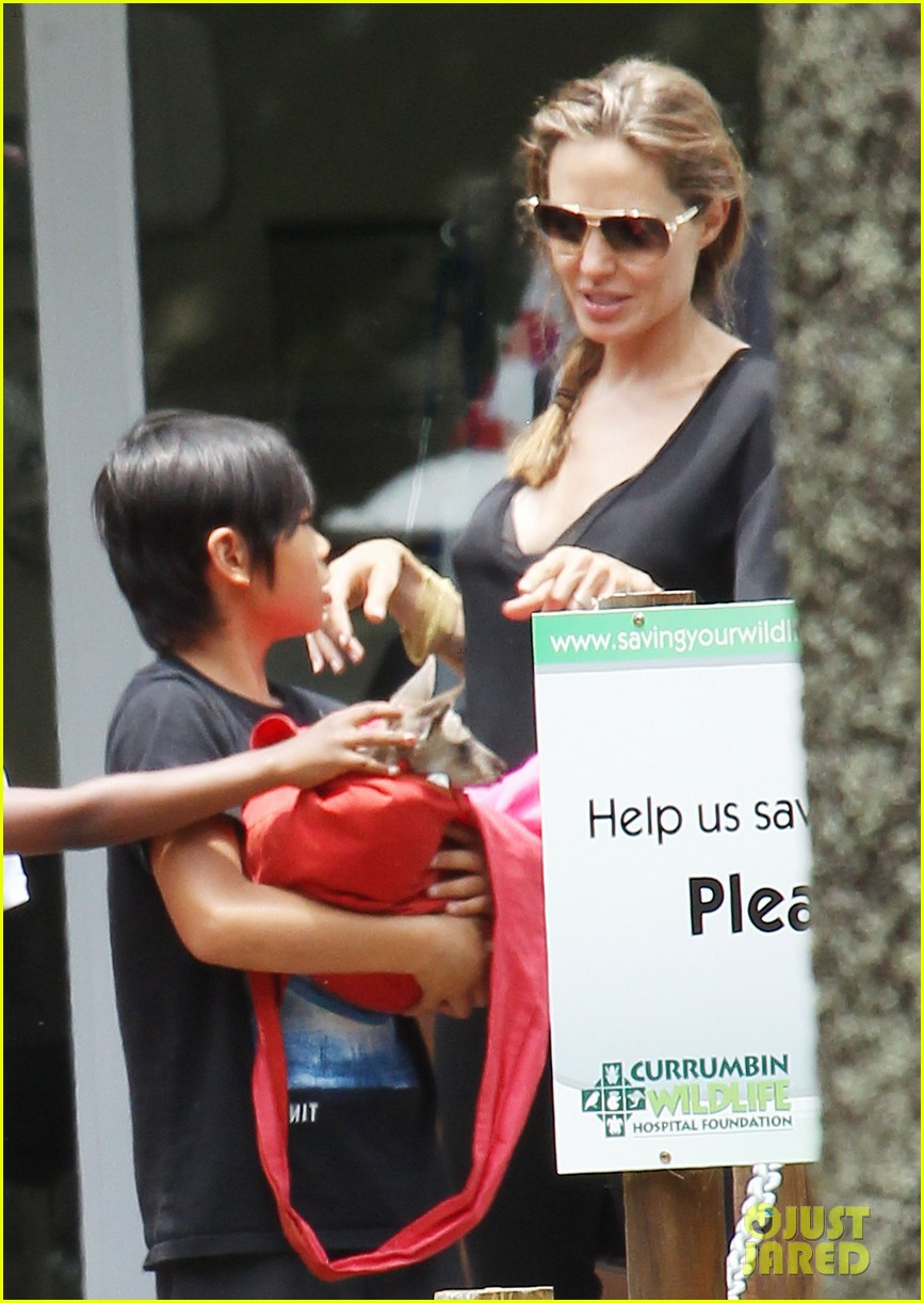 angelina jolie brad pitt visit the zoo with all six kids 52