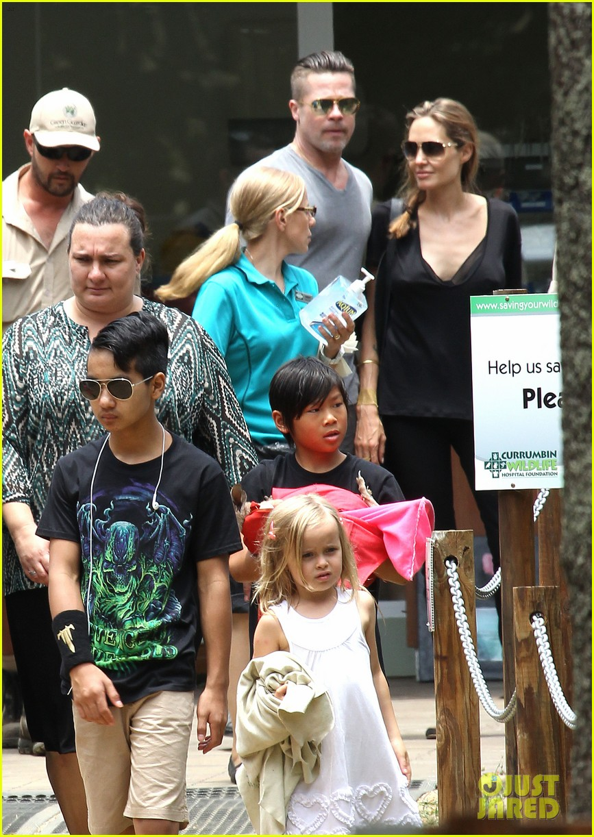 angelina jolie brad pitt visit the zoo with all six kids 653018301