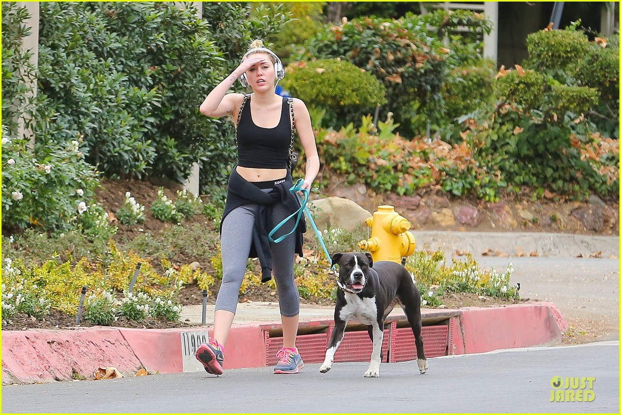 miley cyrus bares midriff for mary jane 213024624
