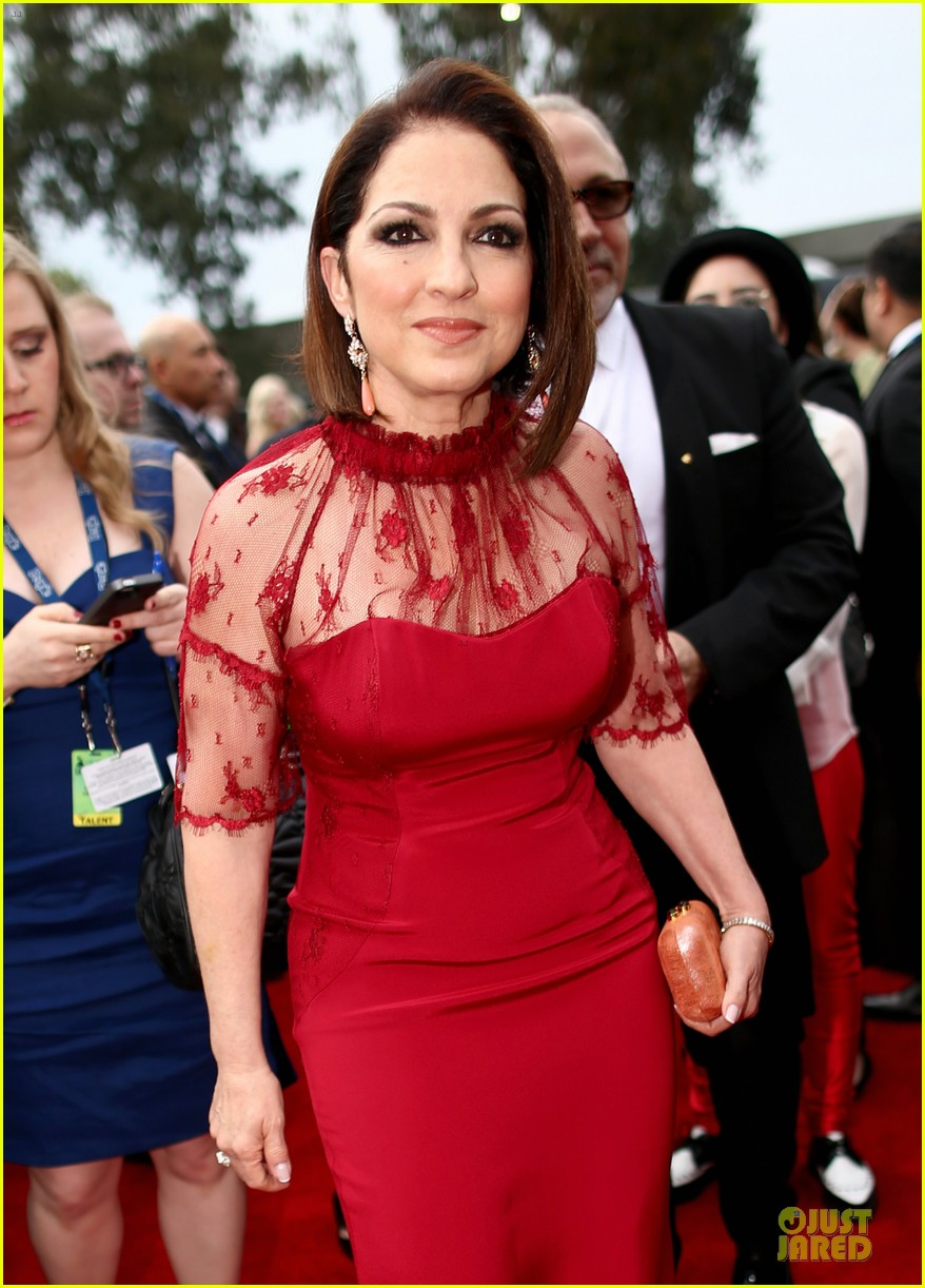 gloria estefan stevie nicks grammys 2014 red carpet 11