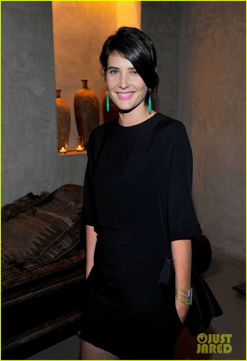 busy philipps cobie smulders irene neuwirth cocktail party 113047841