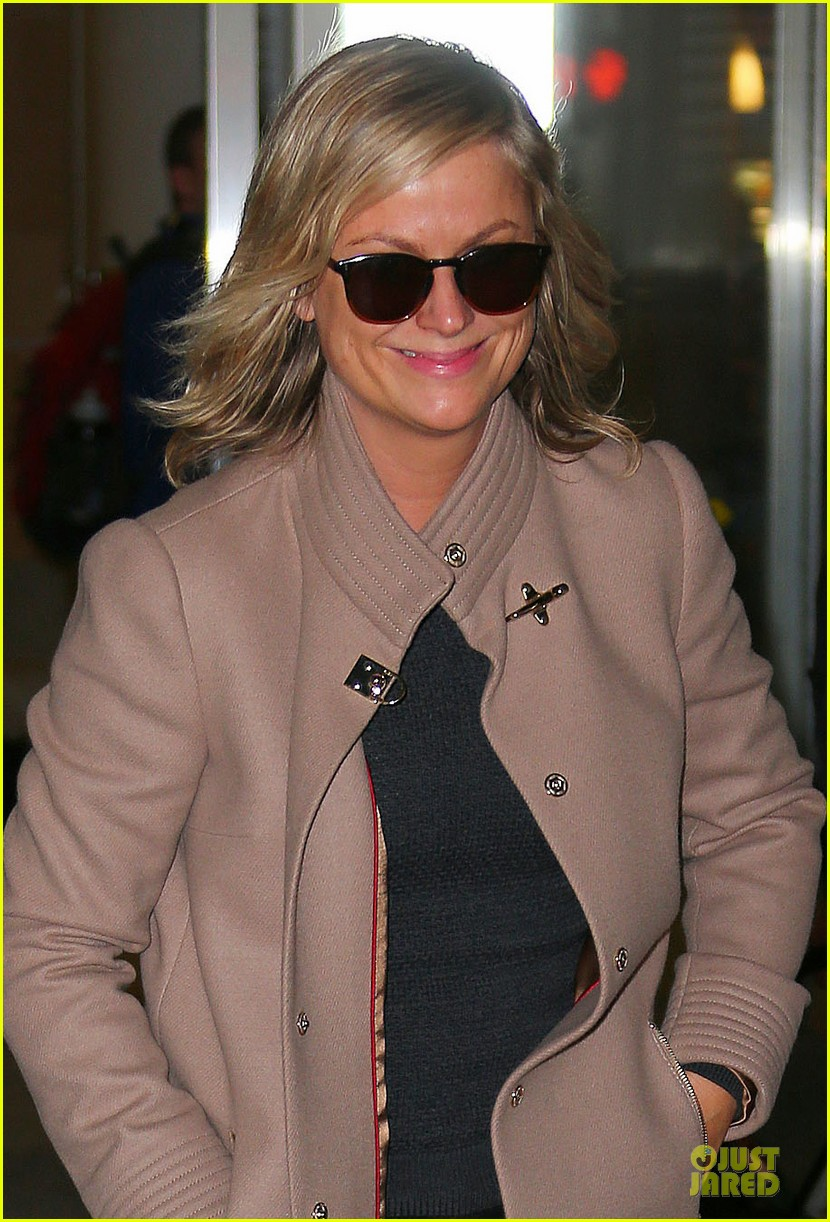 amy poehler old soul will be directed by david wain 023045383
