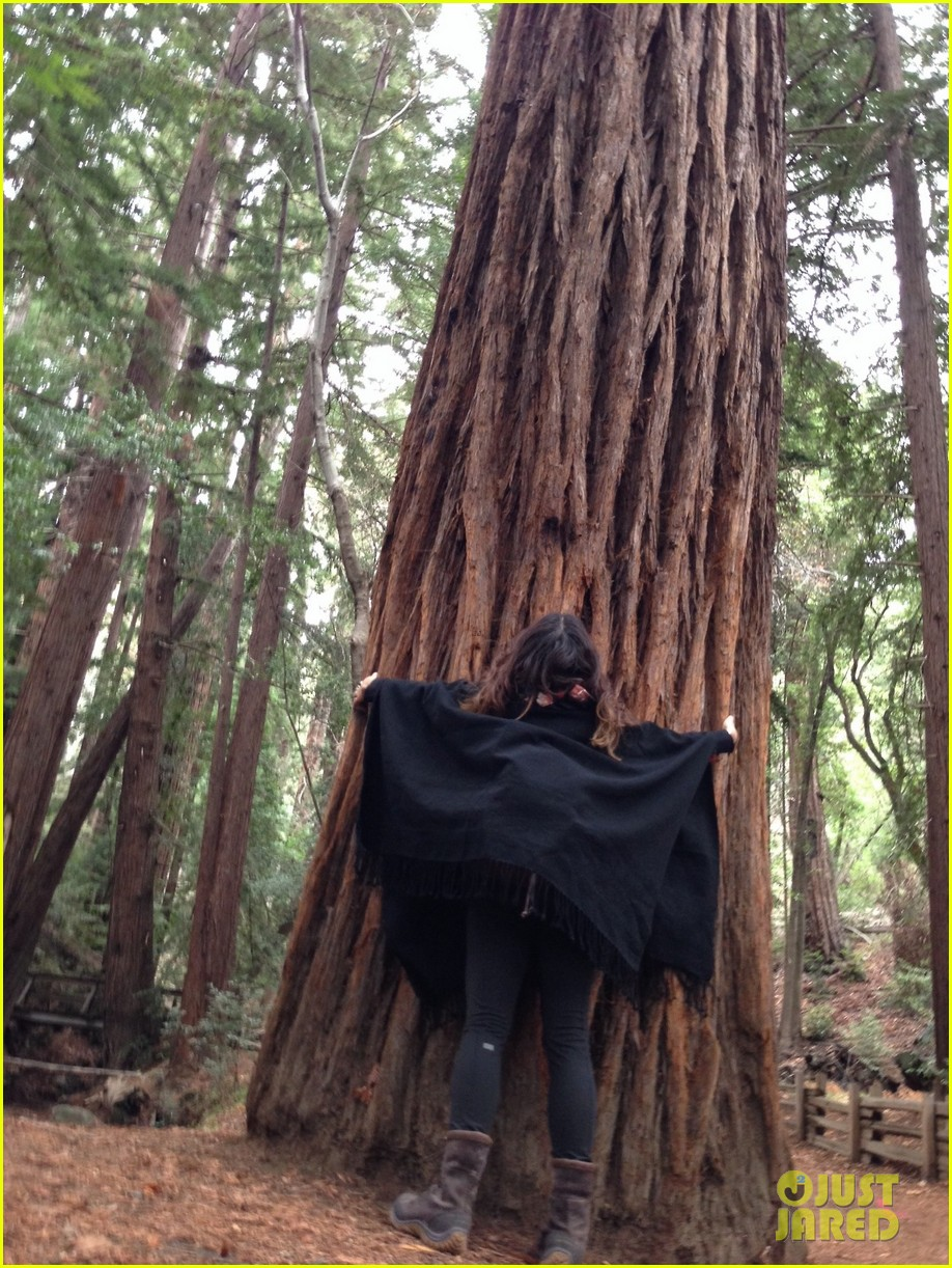 vanessa hudgens loves hugging trees see the cute pic 05