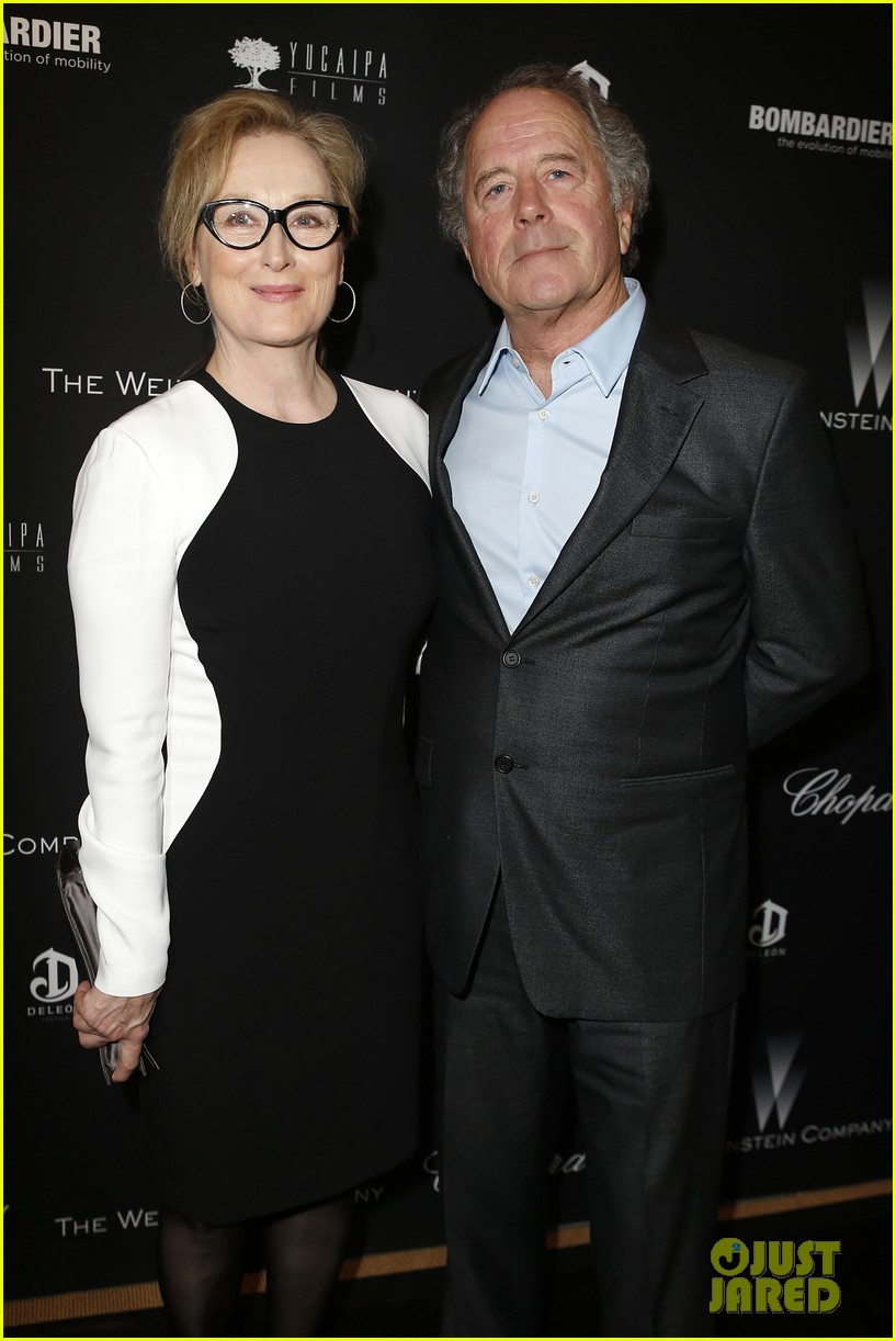 meryl streep christoph waltz pre oscars party attendees 06