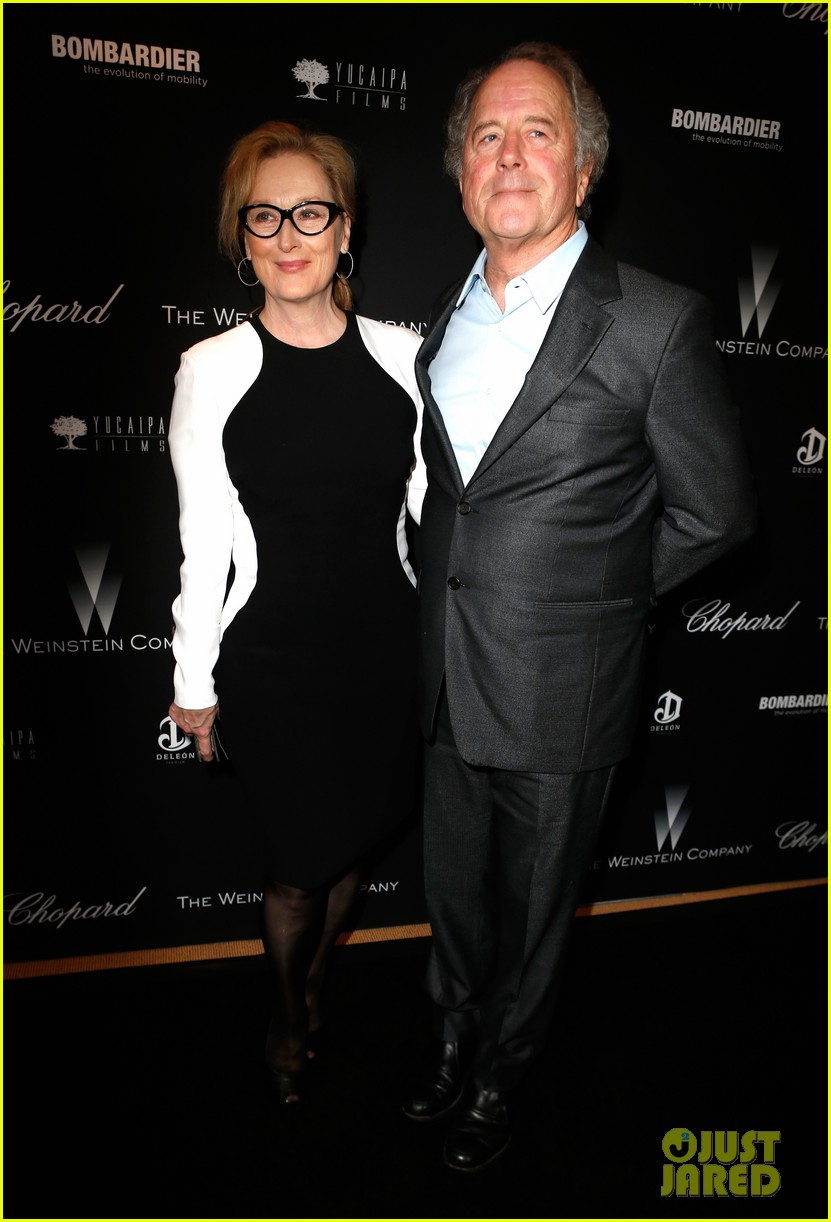 meryl streep christoph waltz pre oscars party attendees 083063624
