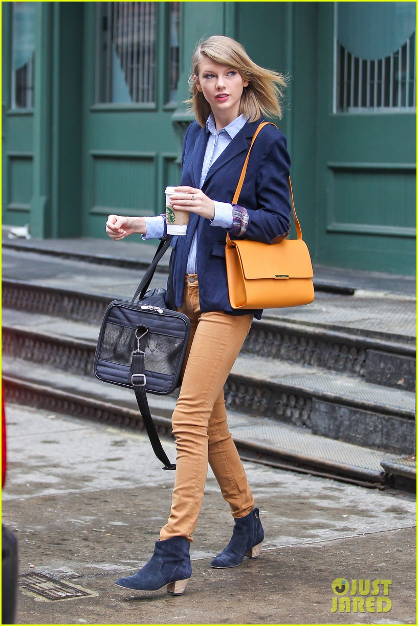 taylor swift brings her cat meredith around nyc in travel carrier 12