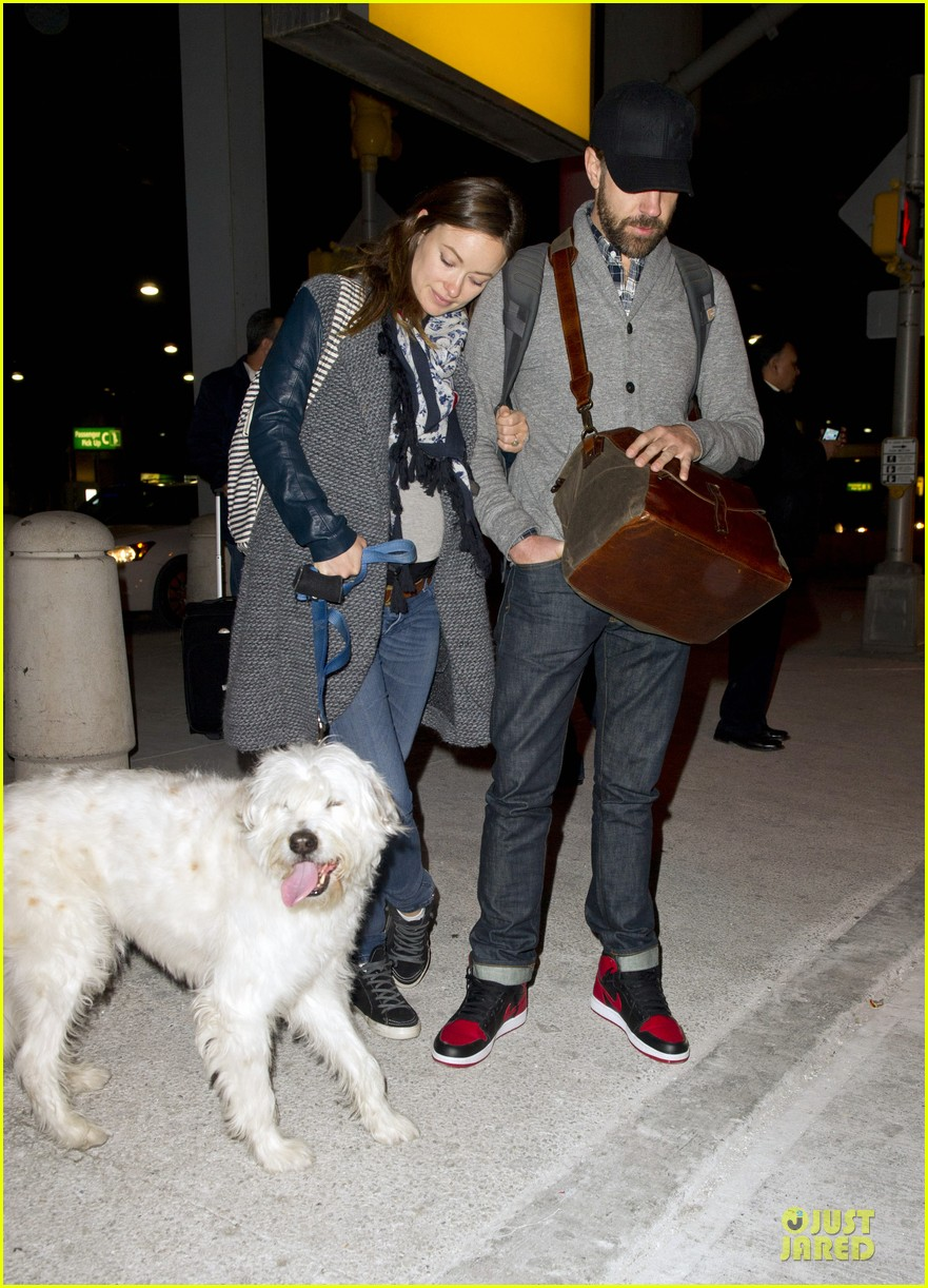olivia wilde reduces pregnancy fatigue with jason sudeikis shoulder 013066259