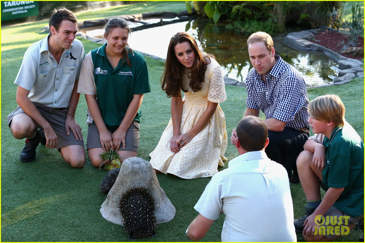 prince george goes to the zoo kate middleton prince william 163095517