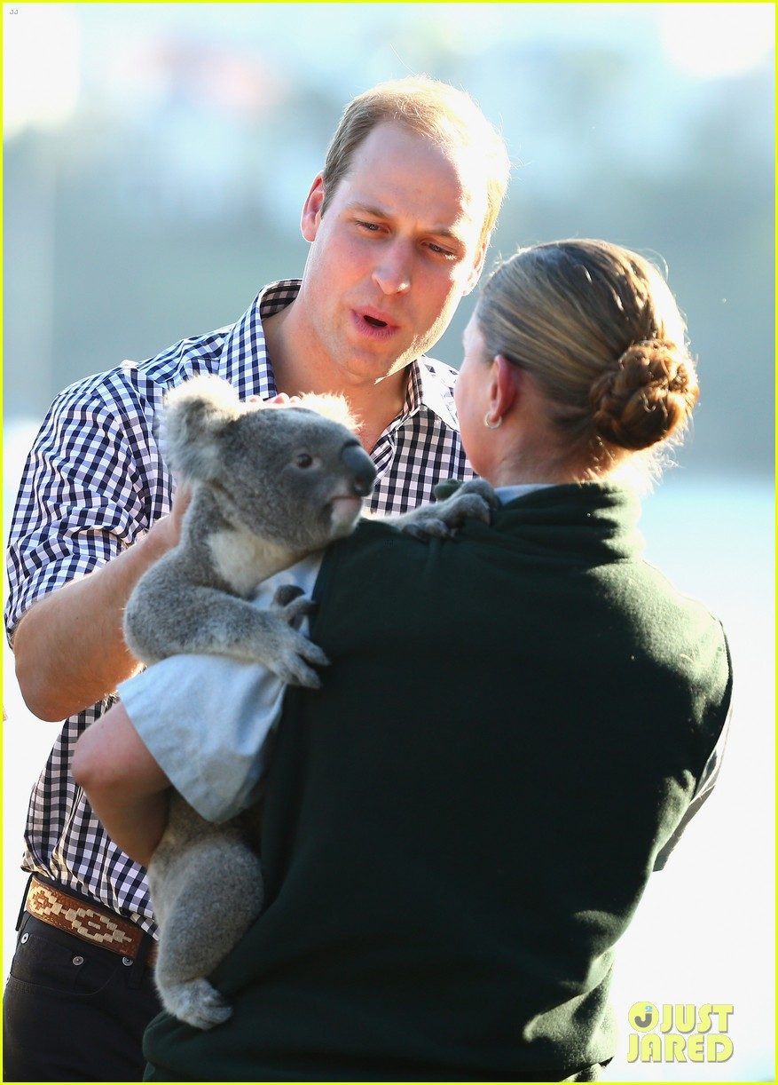 prince george goes to the zoo kate middleton prince william 283095529