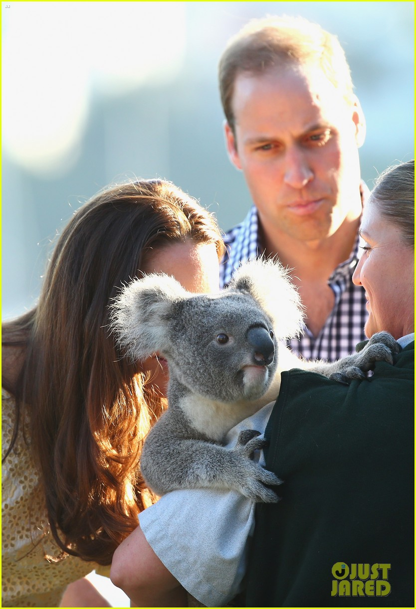 prince george goes to the zoo kate middleton prince william 30