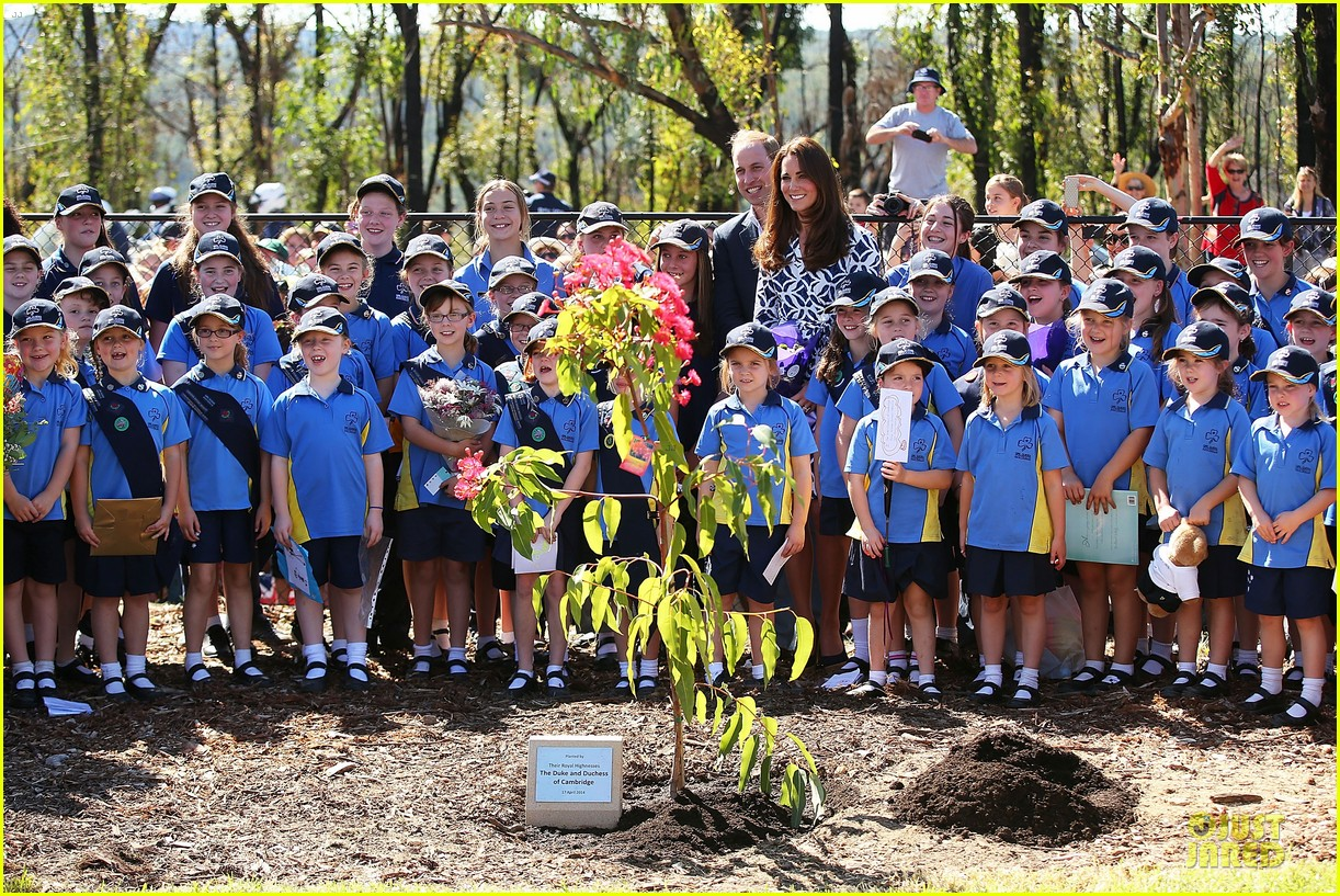 kate middleton prince william plant tree in australia 053093684