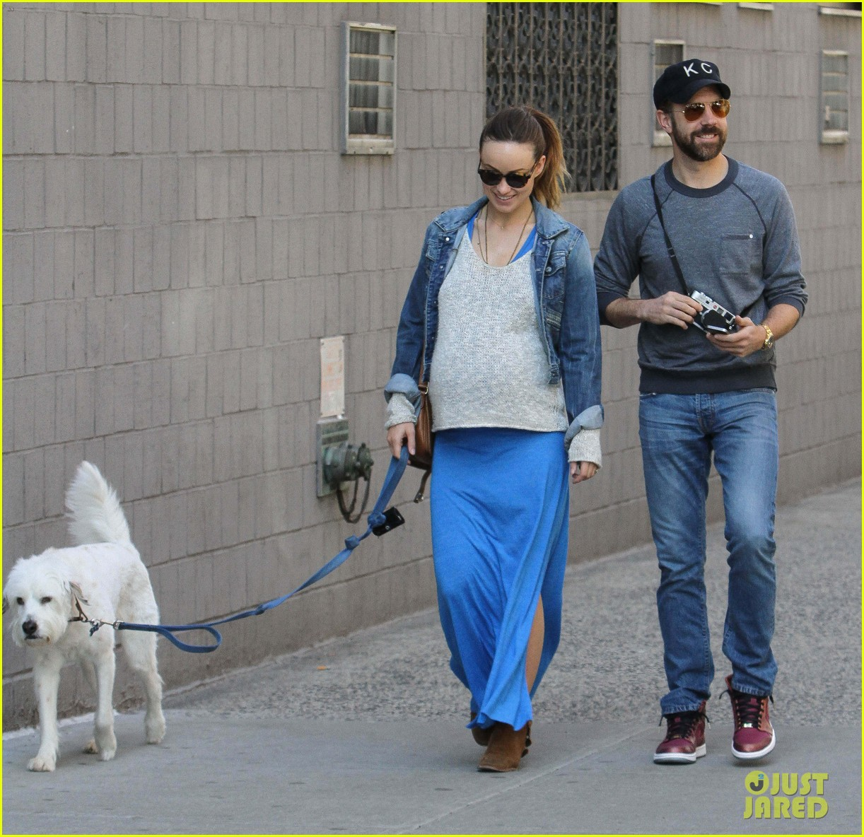 olivia wilde growing baby bump dog walk 14