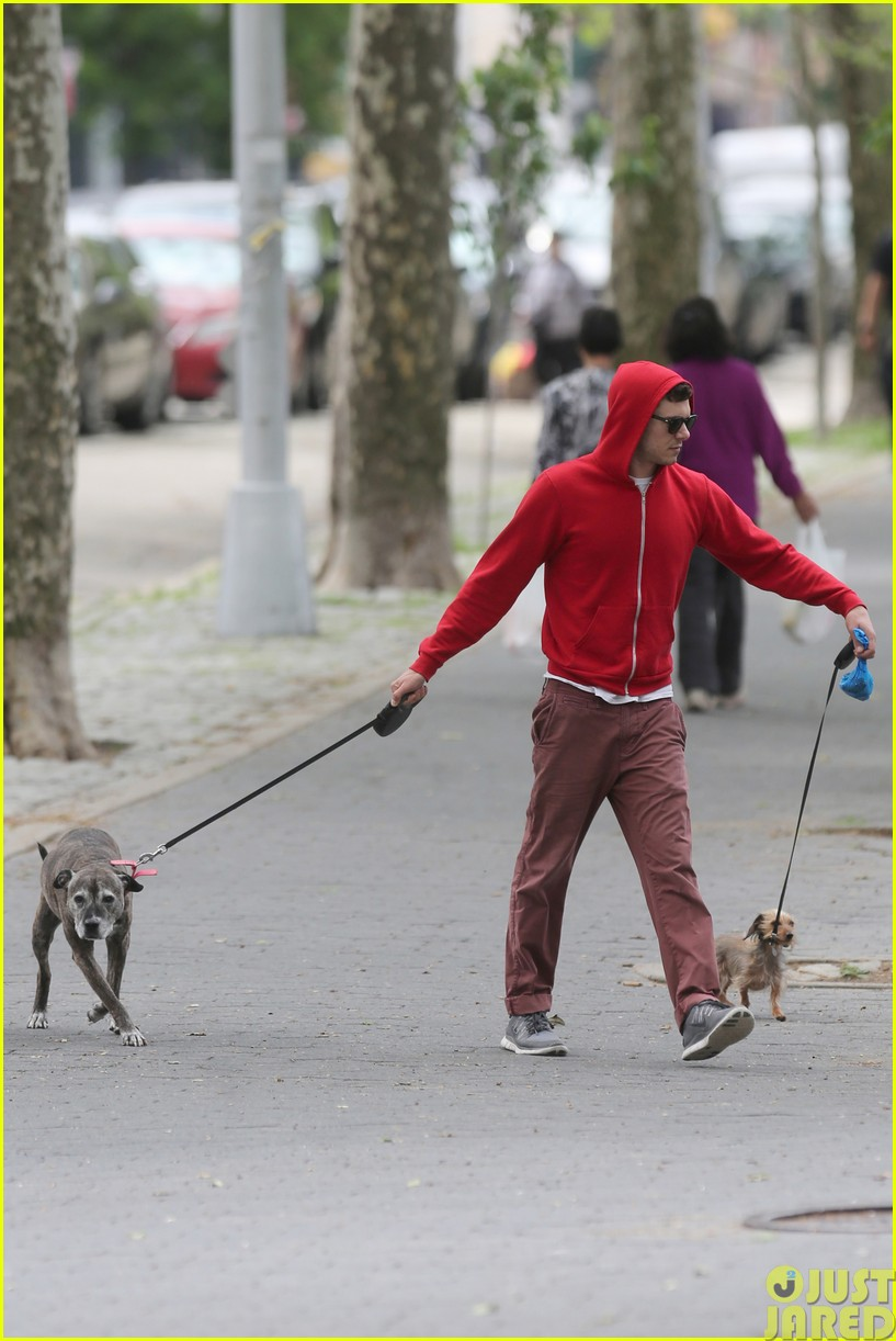 adam brody walks the dogs in his favorite sweatshirt053121662