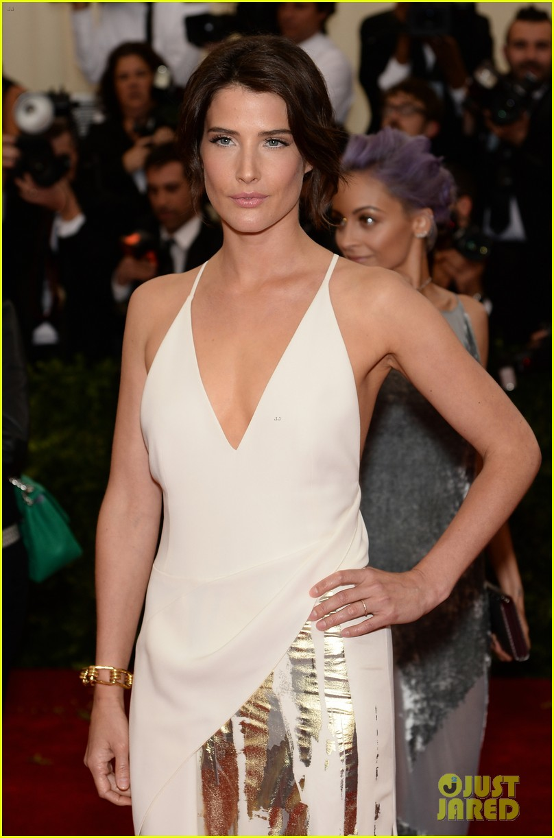 cobie smulders shines on met ball 2014 red carpet 05