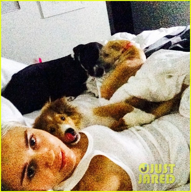 miley cyrus gets tattoo to honor dog floyd 153150355