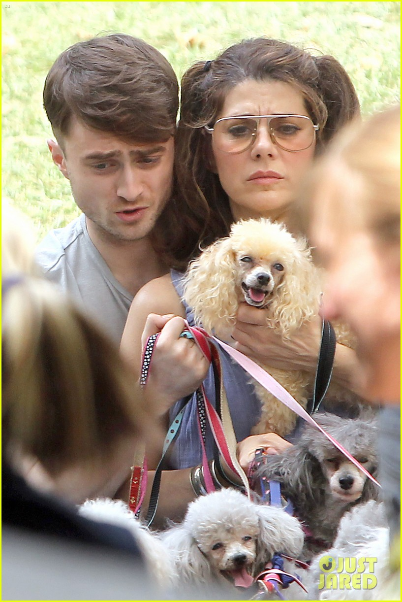daniel radcliffe dog walker trainwreck nyc set 323147579