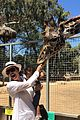 kim kardashian daughter north west feeds giraffe 05