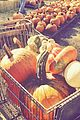 leann rimes lifts a huge pumpkin 12
