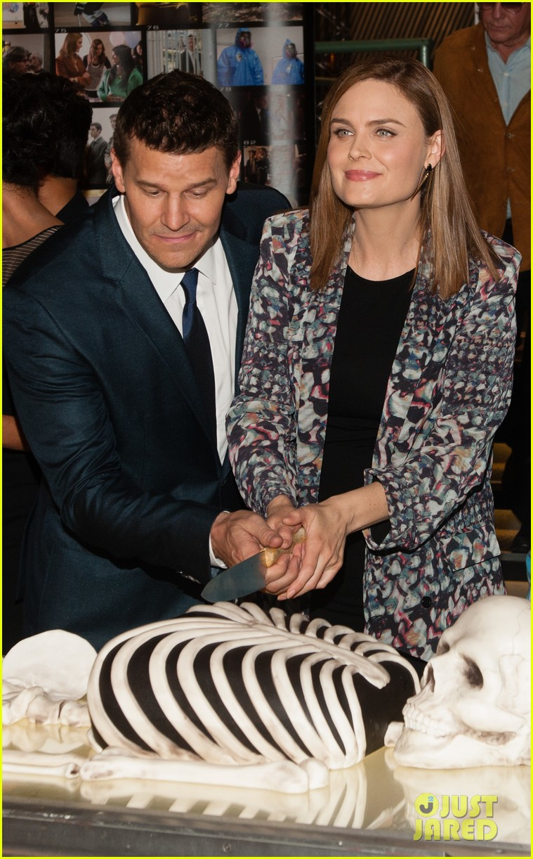 David Boreanaz And Emily Deschanel 2014 The gallery for -->...