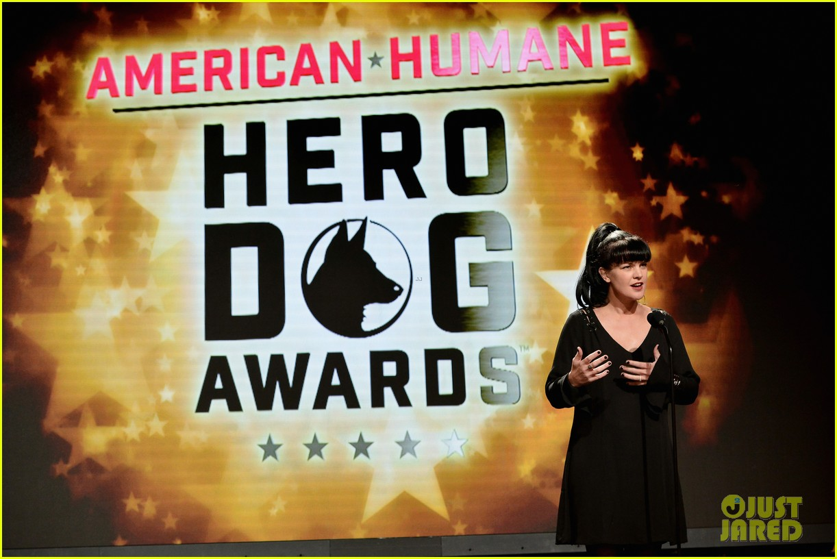 katharine mcphee shows her support at the hero dog awards 2016 333755659