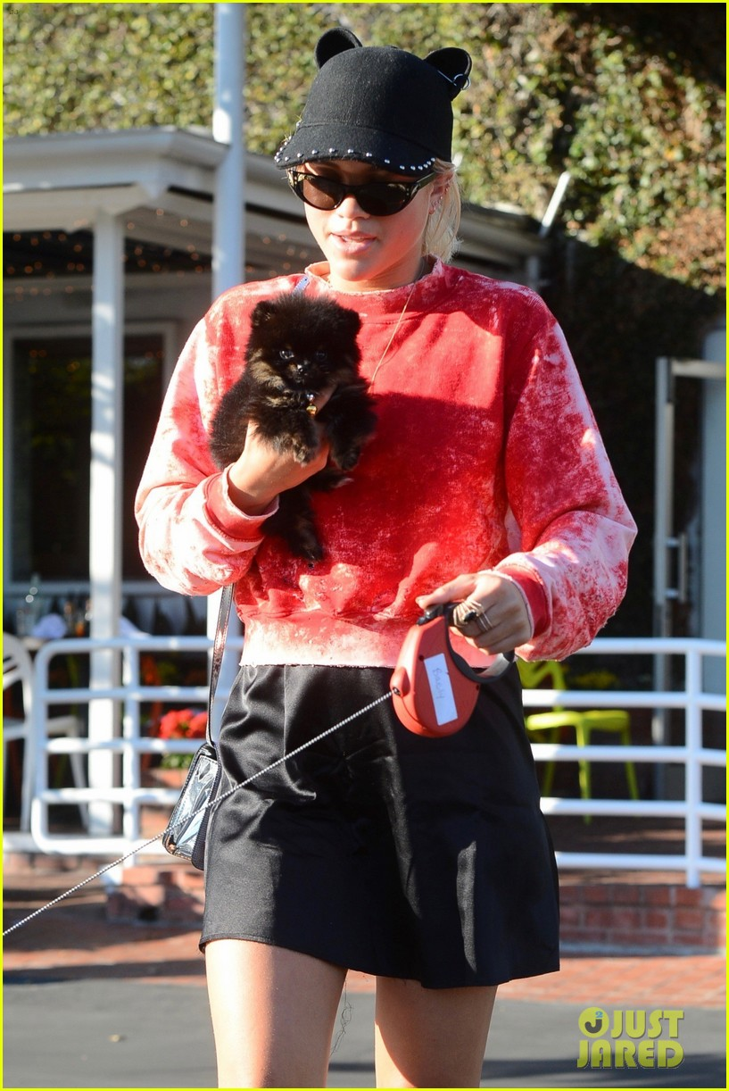 Sofia Richie  >> Full Sized Photo of sofia richie dogs fred segal lunch 02 | Photo 3794303 | Just Jared
