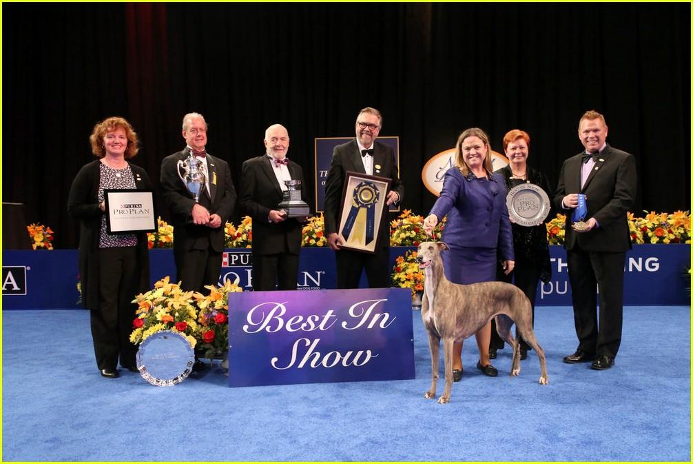 Purina National Dog Show