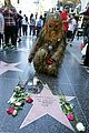 carrie fishers fans give her star on walk of fame 03