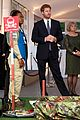 prince harry honors his mom work to eliminate landmines 02