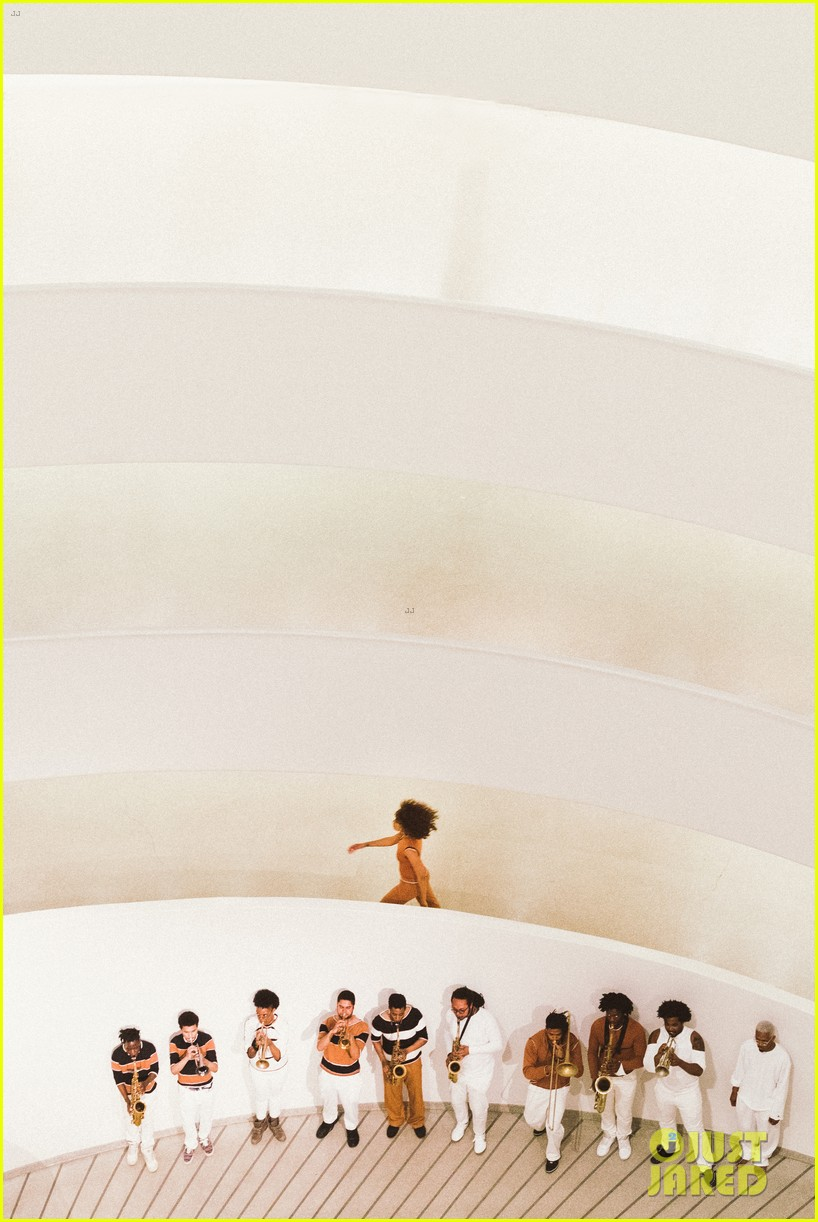 solange knowles guggenheim performance 253901675