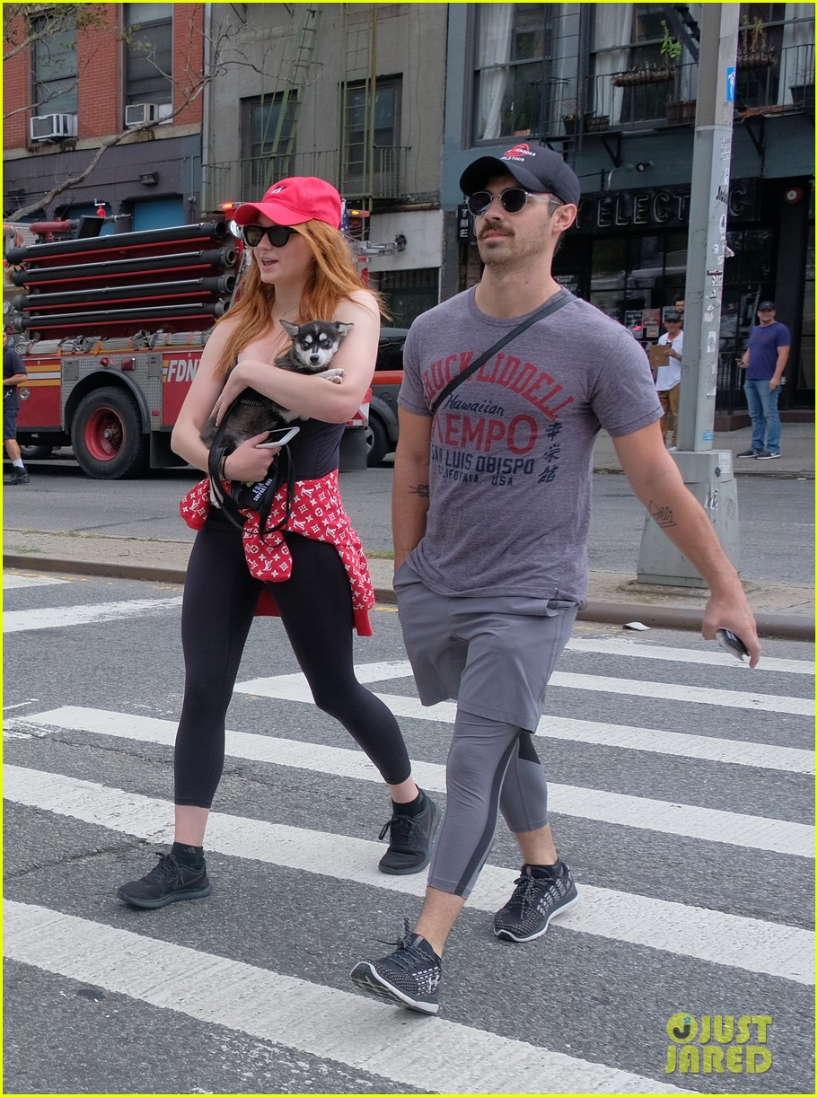 joe jonas and sophie turner adorably walk their new dog together 053952242
