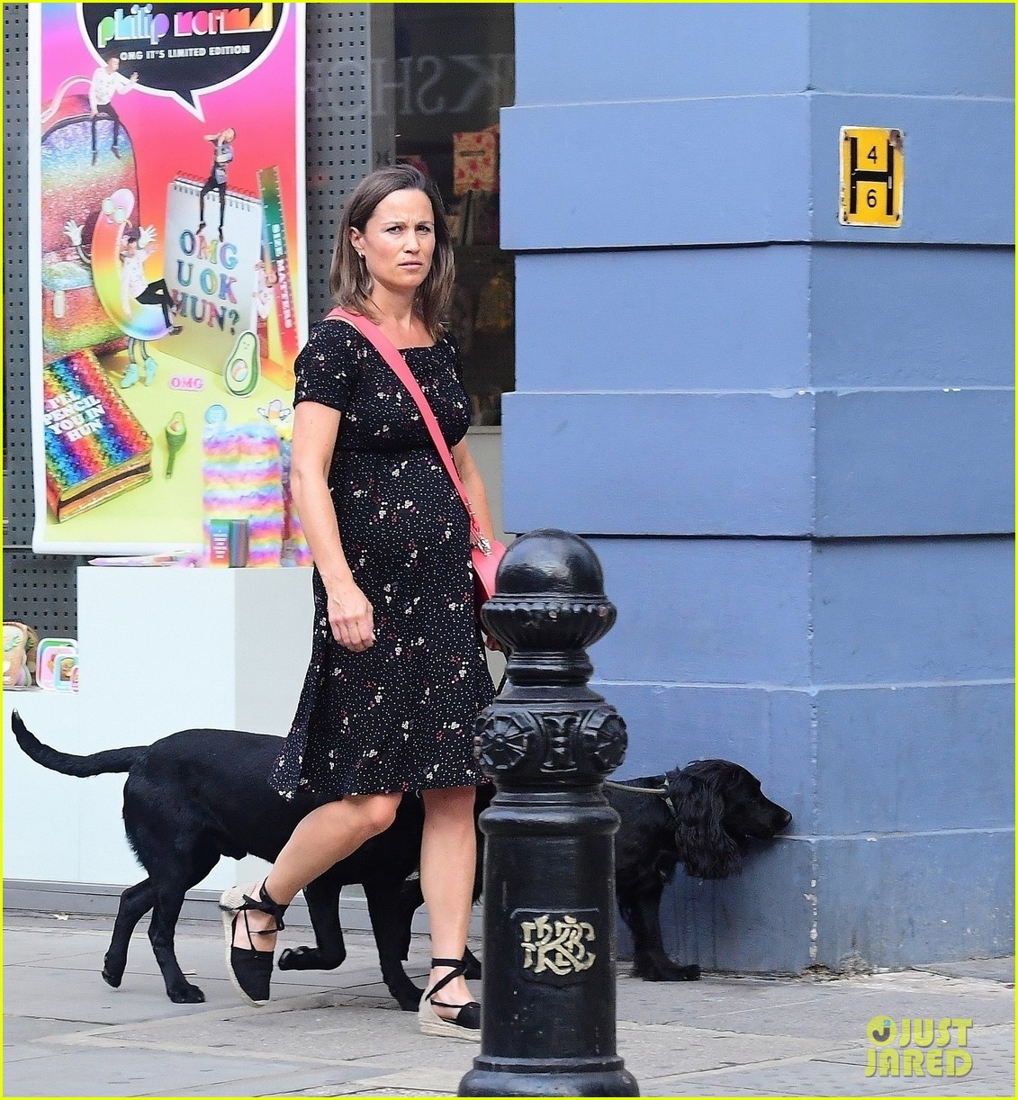 pippa middleton takes her dogs for a walk 014117667