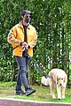 joe jonas sophie turner monday dog walk 31