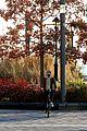 timothee chalamet bike ride in new york 15