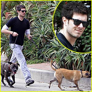 The Dogs Take Adam Brody For a Walk