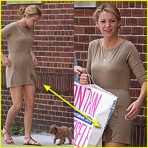 Dog Pees On Blake Lively's Dress