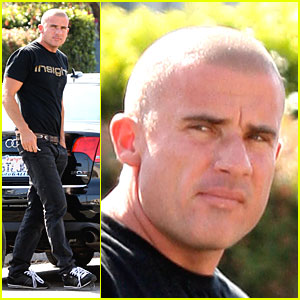 Dominic Purcell Has Insight Outside