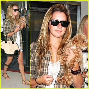 Ashley Tisdale's Airplane Buddy