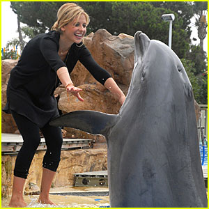Sarah Michelle Gellar Takes a Dip With Dolphins