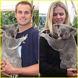 Andy Roddick & Brooklyn Decker: Koala Couple