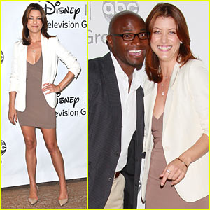 Kate Walsh & Taye Diggs: TCA Panel Pair