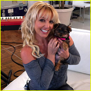 Britney Spears: 'Meet My New Lit